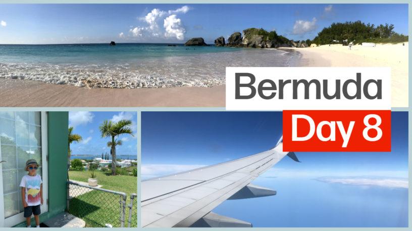Bermuda Day 8